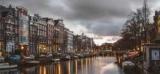 Число новых натурализованных граждан Нидерландов удвоилось в 2020 году